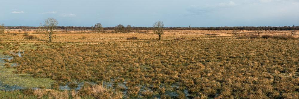 Drenthe1013.jpg