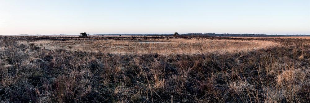 Drenthe105.jpg