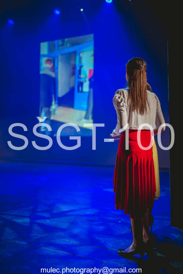 wm_SŠGT-100.jpg