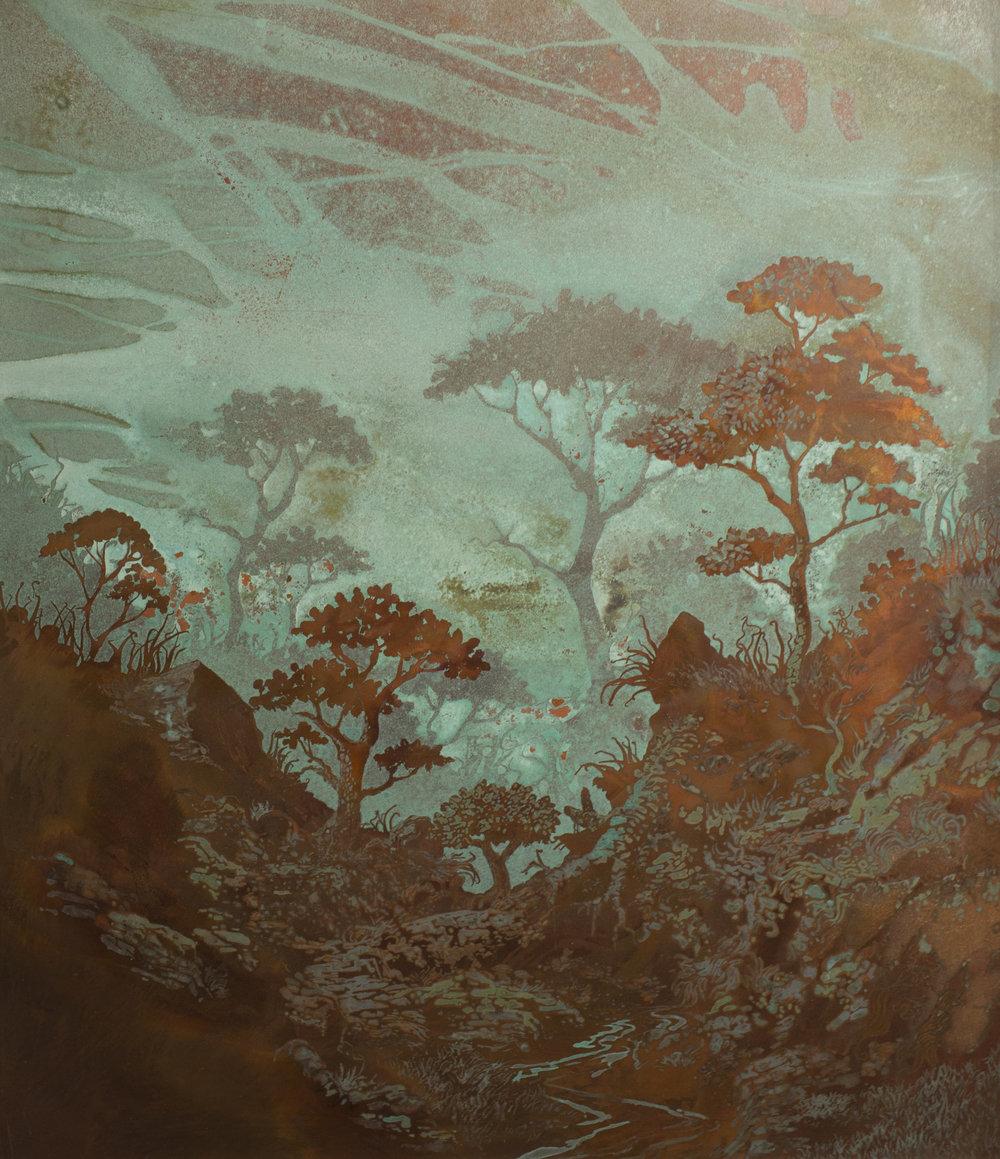 forest1croppp.jpg
