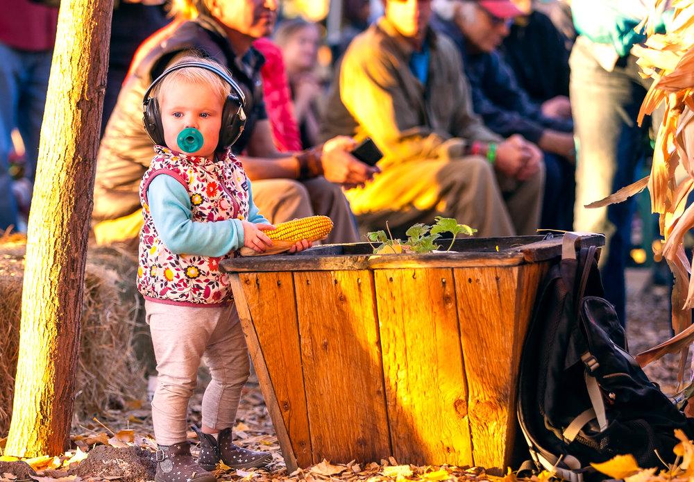 brashearphoto-bigb-ciderfest-704.jpg