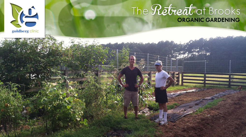 28-Brooks_organic garden3.jpg