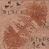 black birds ep.jpg