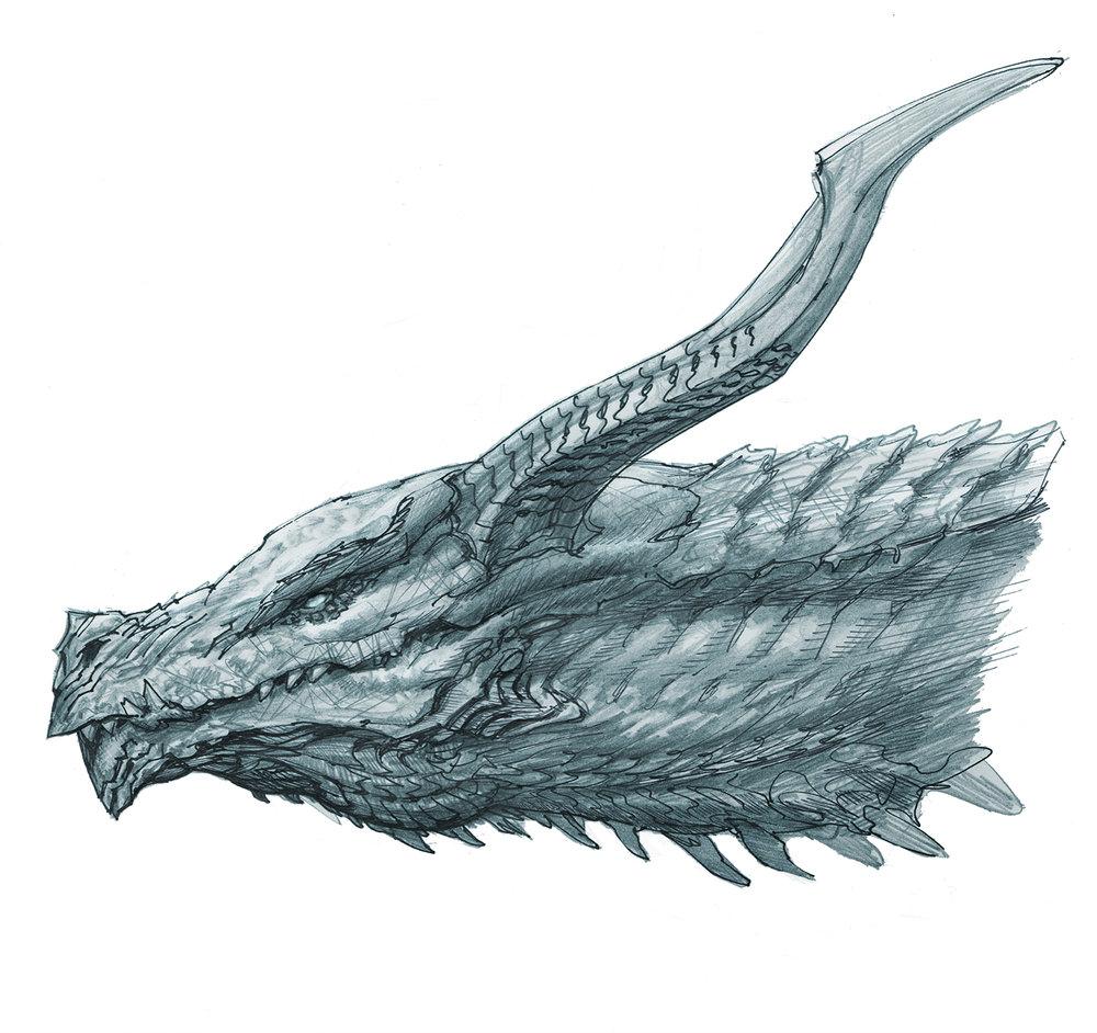 Dragon3_wip.jpg