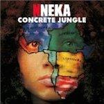 Nneka3