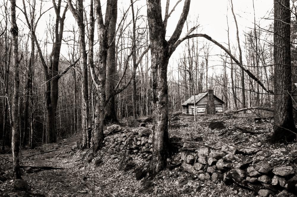 Ephraim Bales Cabin 1