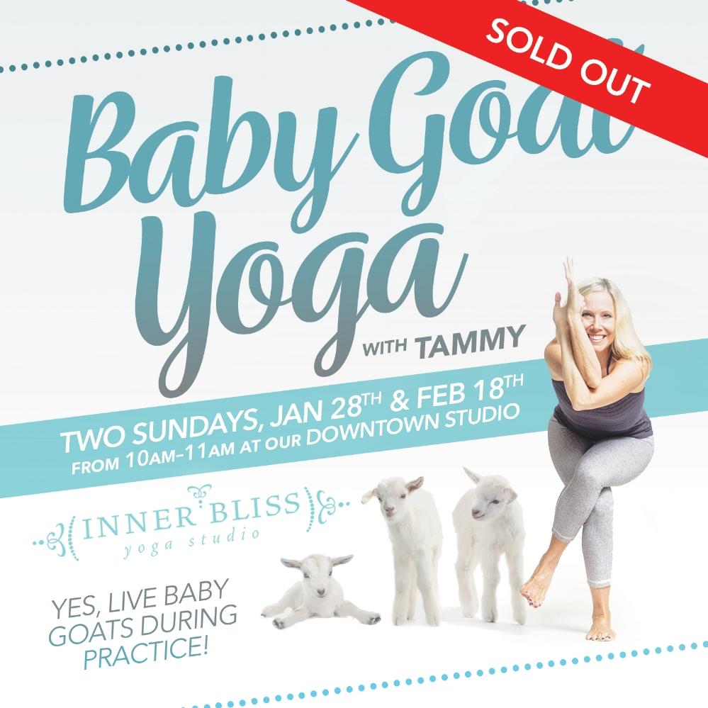 iby-goat-yoga.jpg
