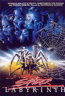 spiderlabyrinth.jpg