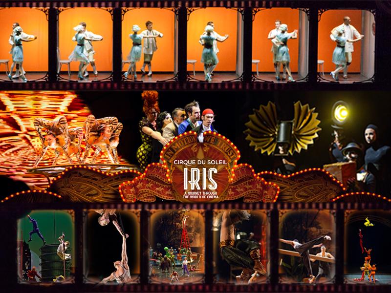 IRISmosaic.jpg