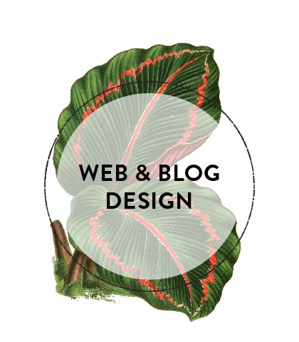 Website_Blog_Design_Brisbane