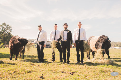 Aren't there always cows that need feeding at a wedding? There is at Riverwood Weddings.