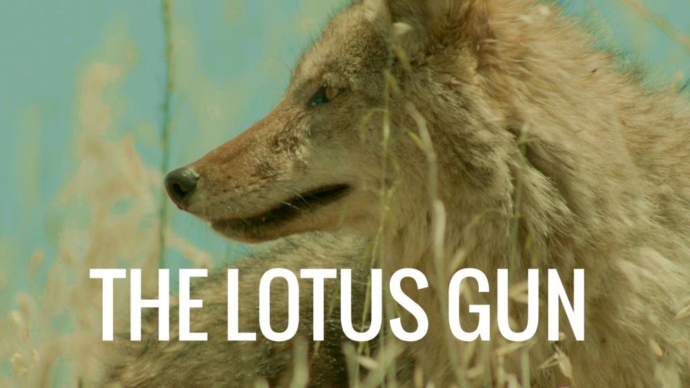 the-lotus-gun