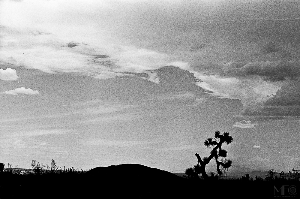 Lost in the west-   35mm-   MFC-