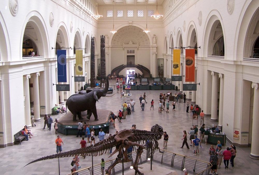 chicago-field-museum-2.jpg