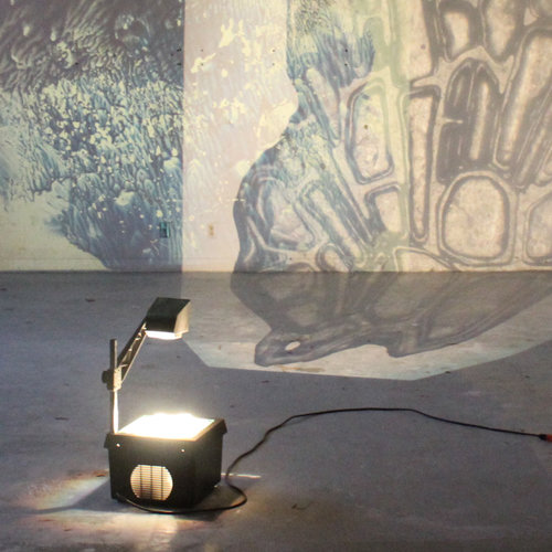 Installation - The objects and slides produced are then illuminated and magnified using outdated projection systems.