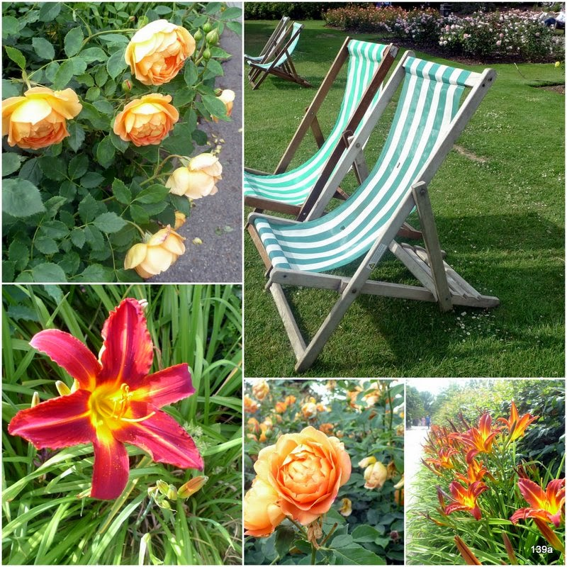 Regents+Park+Deck+Chairs+&+flowers.jpg