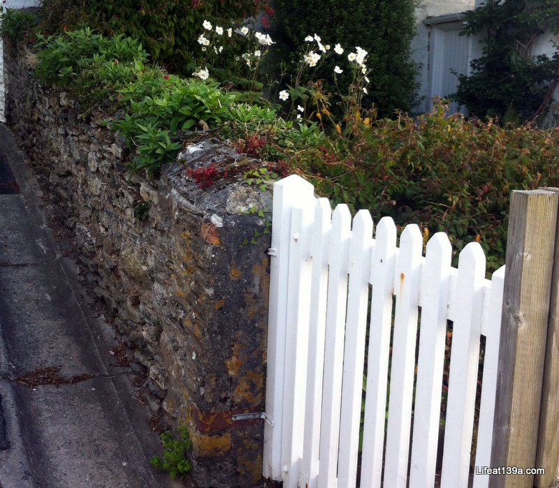 I'VE WHITE GATE ENVY...