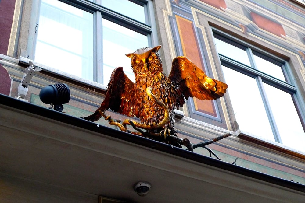 goldenowl.jpg