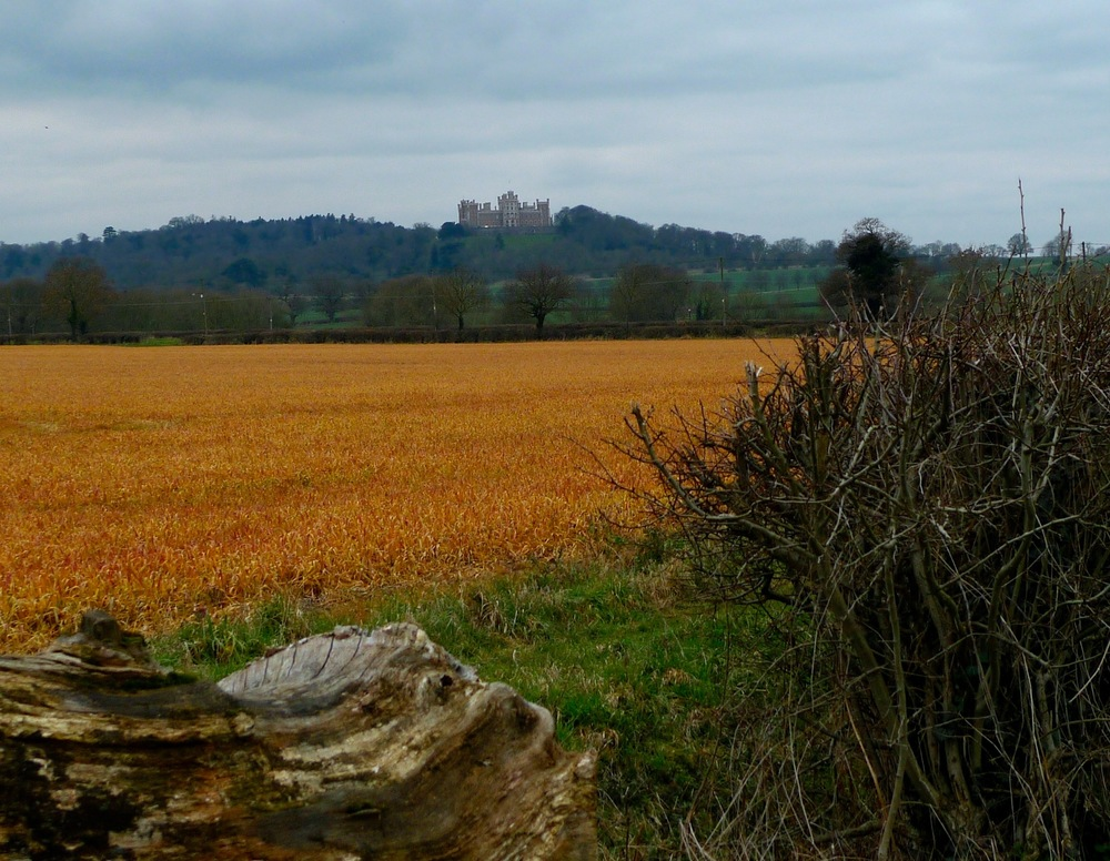 HILLTOP BELVOIR CASTLE