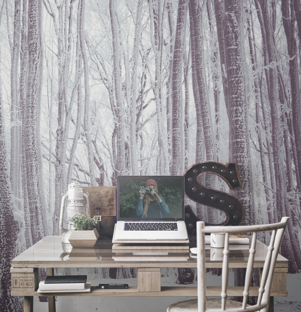 WHITE FOREST Picture Credit: Murals Wallpaper