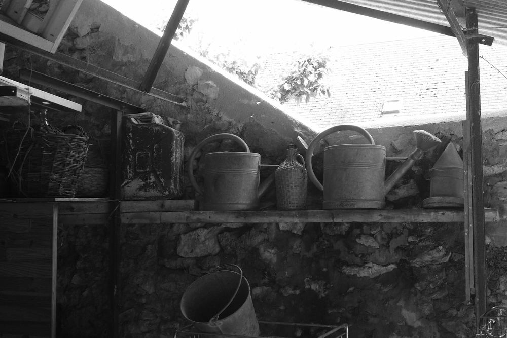 A collection of tin watering cans