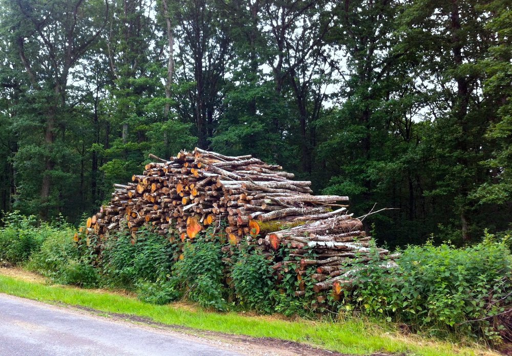 More log piles than Germany