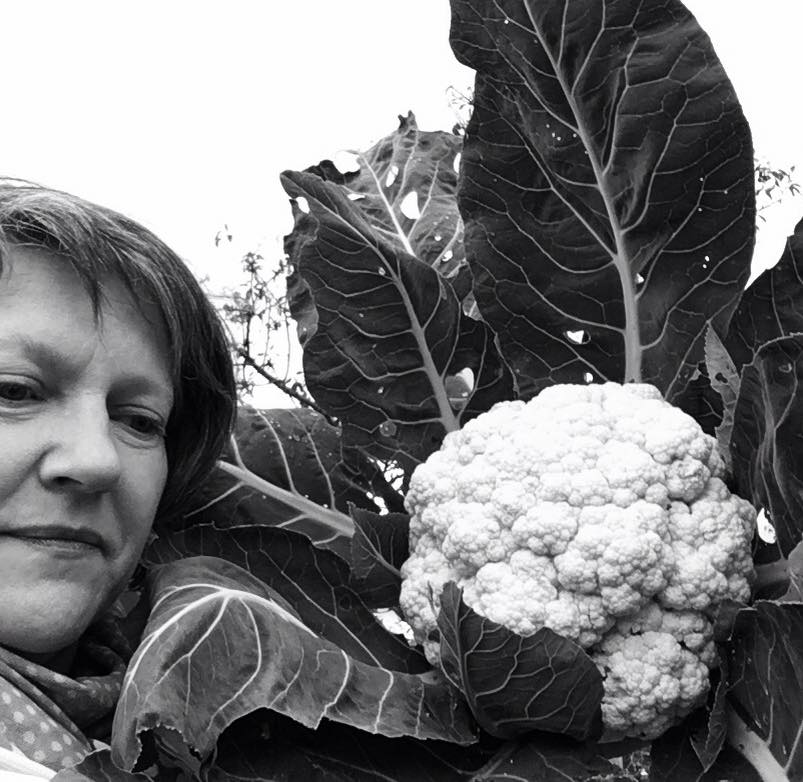 OUR CAULIFLOWER, ALMOST AS BIG AS MY HEAD (NOT THAT MY HEAD IS BIG!)