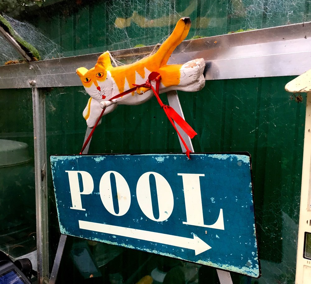 The vintage pool sign has a new home, and no I've still no plans to get a pool