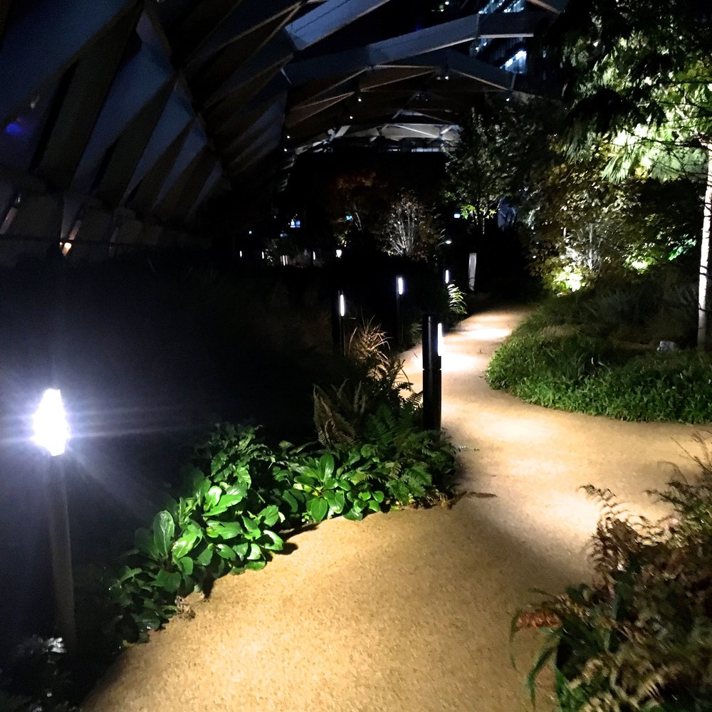 The path leading you through the roof garden in crossrail place in Canary Wharf