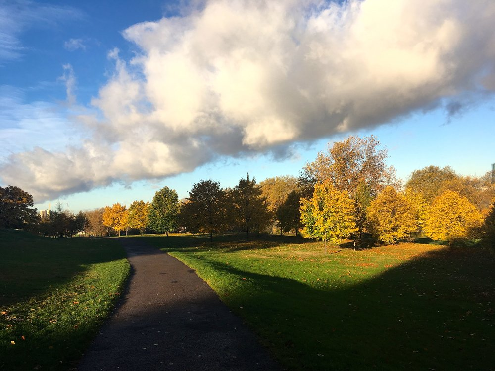 white clouds and blue skies, sunshine and shade and taking a new path in greenwich park