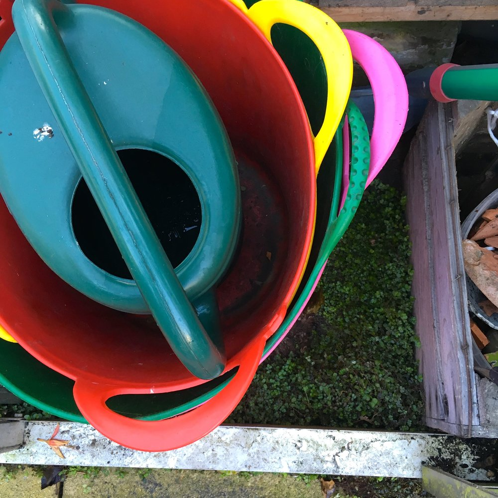 multicoloured trugs in the greenhouse