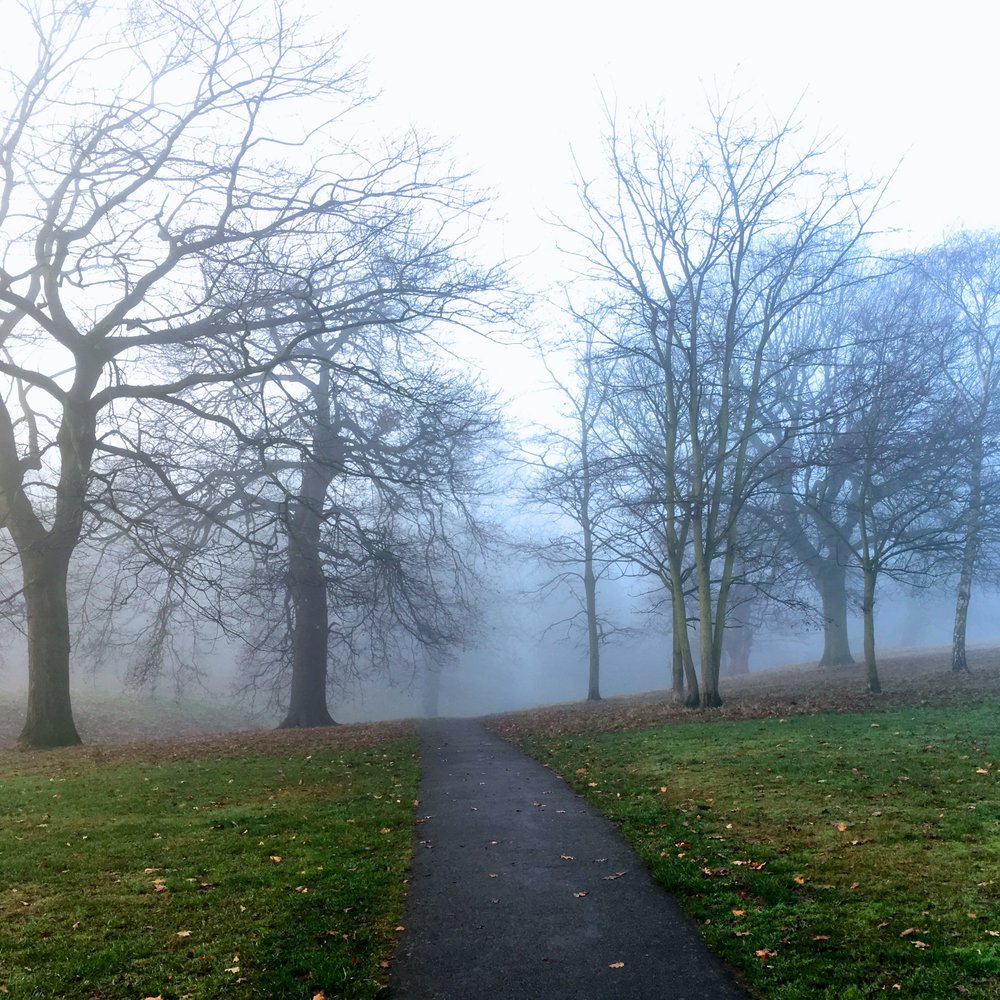 a foggy morning and spooky shots in Greenwich Park