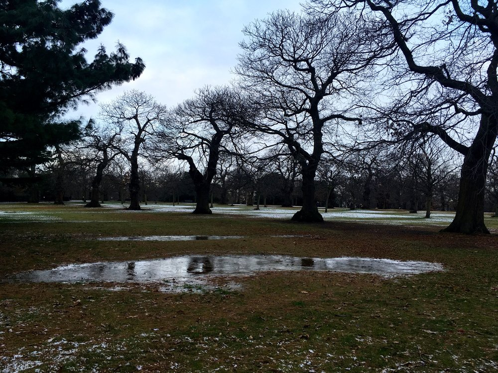 Frozen puddles at the top of Greenwich Park