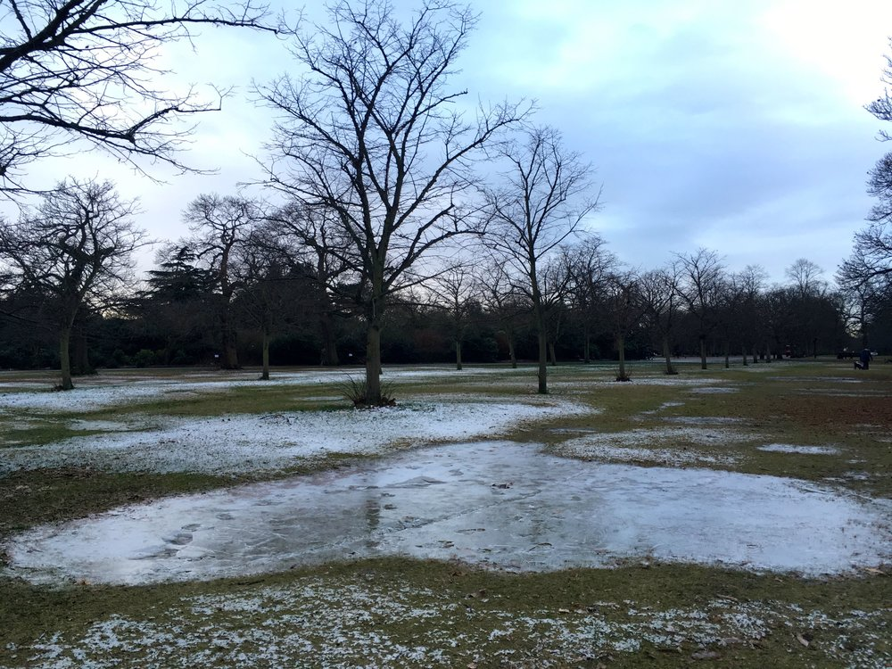 Frozen puddles in Greenwich Park