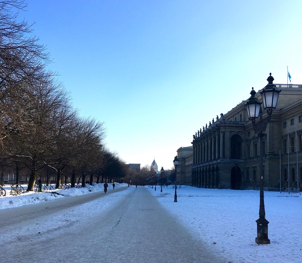 Looking down the main avenue covered in snow in the Hofgarten