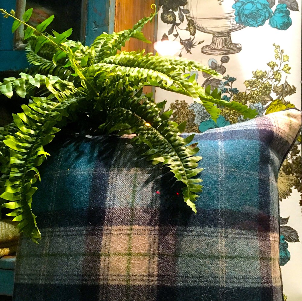 Wallpaper, blue tartan and a faux fern