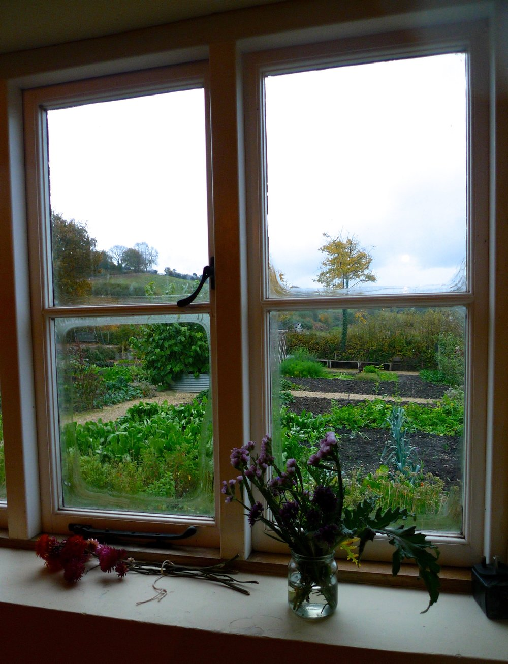 A look out the farmhouse window over the River Cottage garden