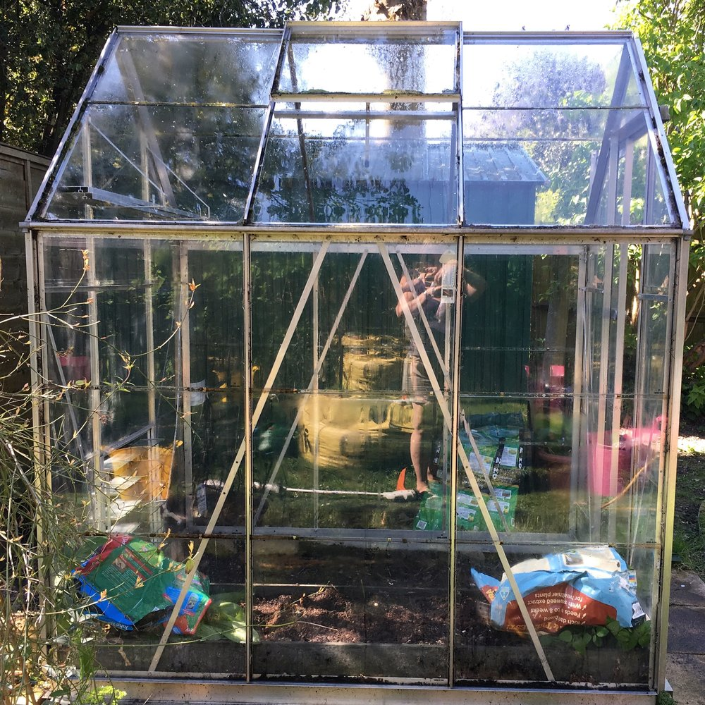 A sparkling - but still empty - greenhouse