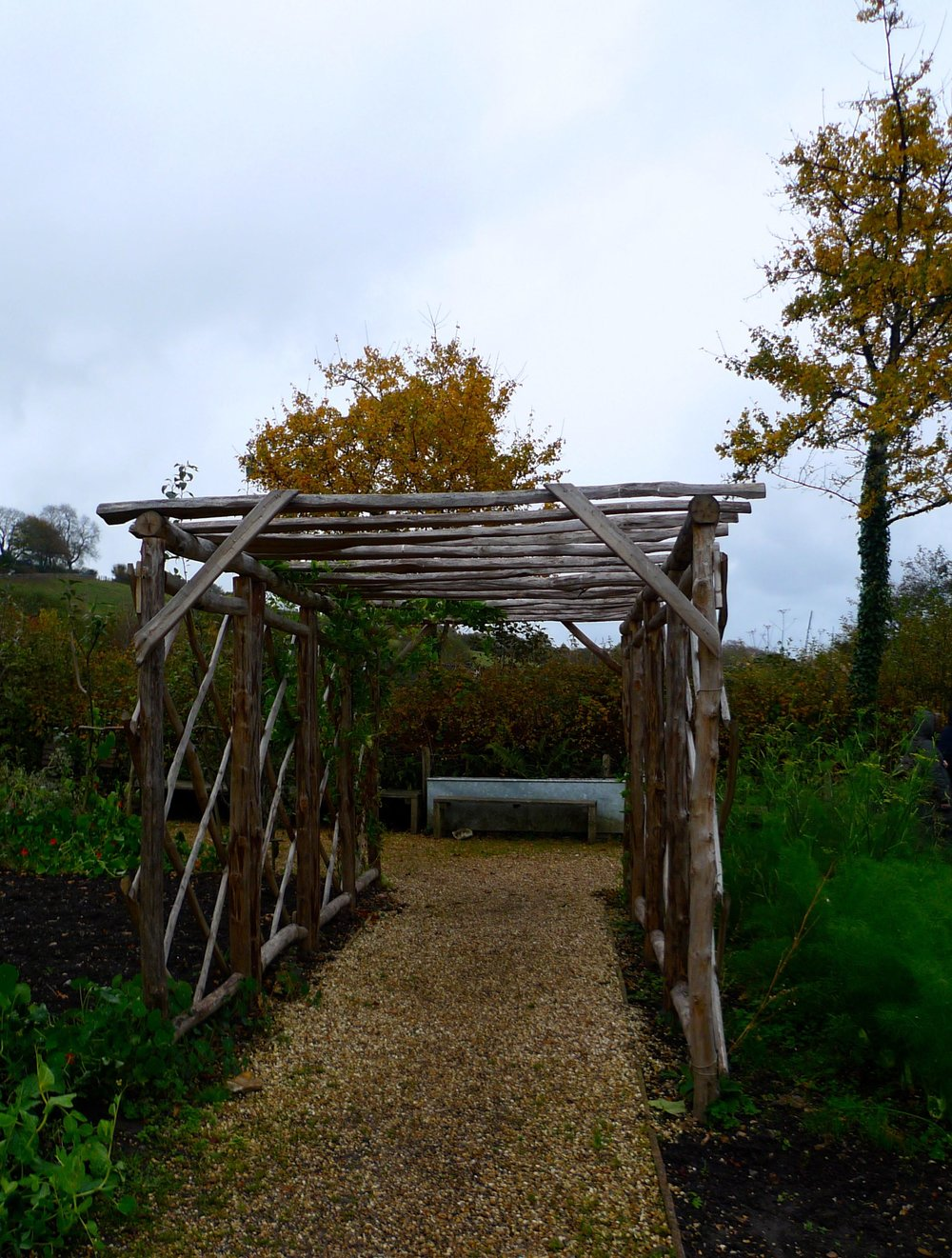 A covered walkway through the garden at River Cottage HQ