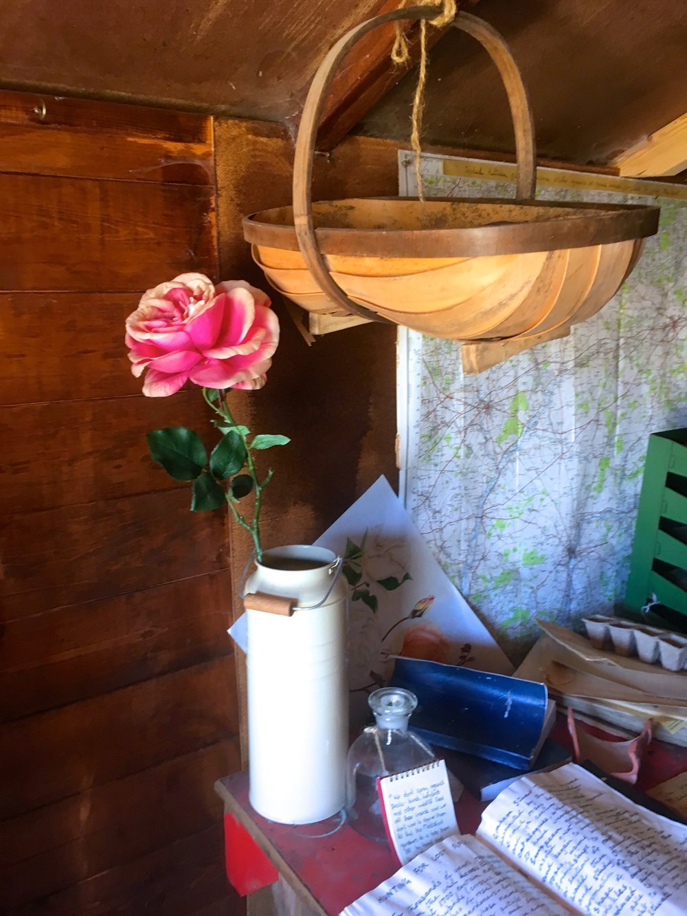 A real rose alongside a trug and other paraphernalia in the potting shed at mottisfont