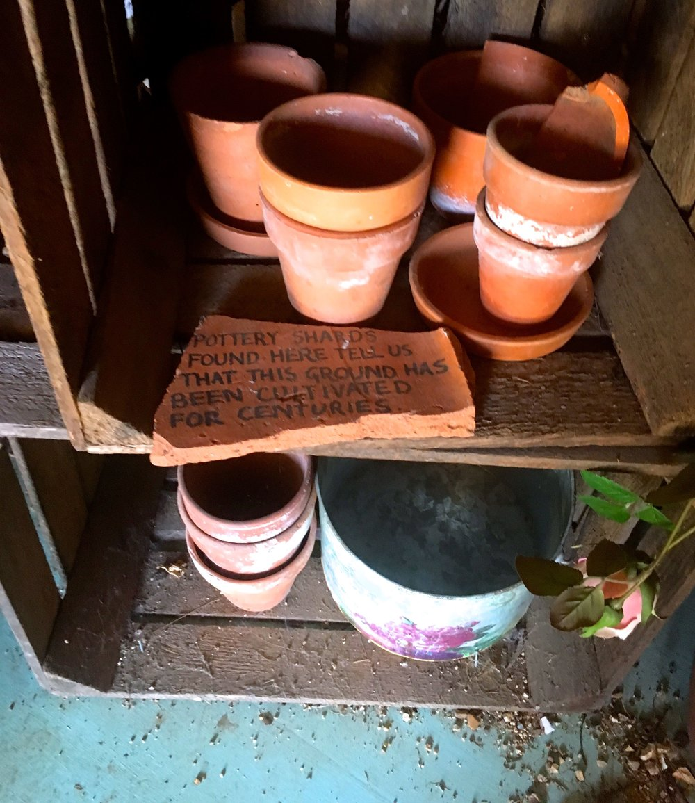 crates and terracotta pots, and more of the Mottisfont story