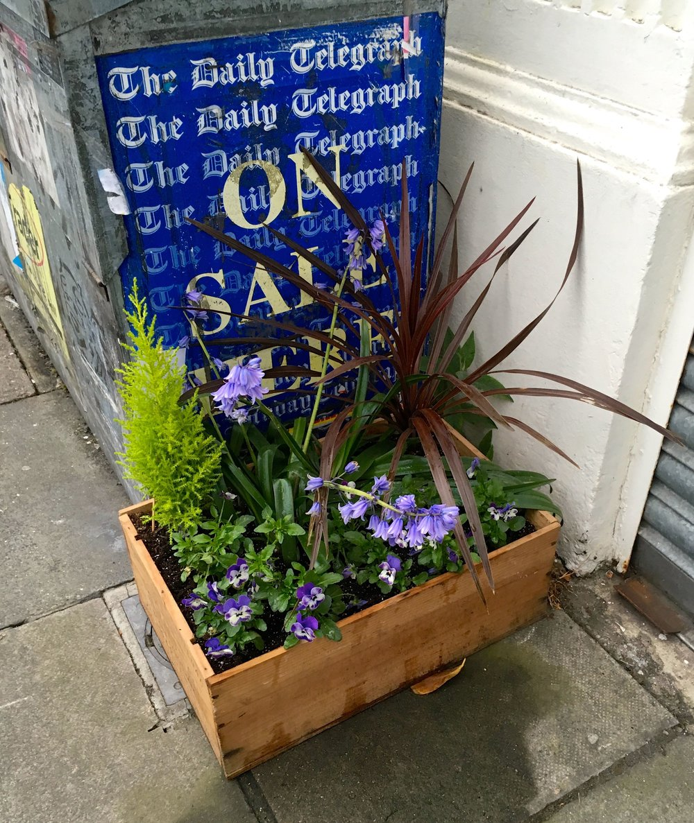 A FLORAL CRATE OUTSIDE THE NEWSAGENTS as part of the Delacourt Road Gardening Group Project in Blackheath South London