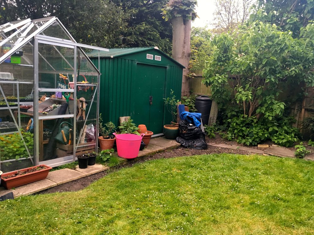 The before shot of the greenhouse and the shed