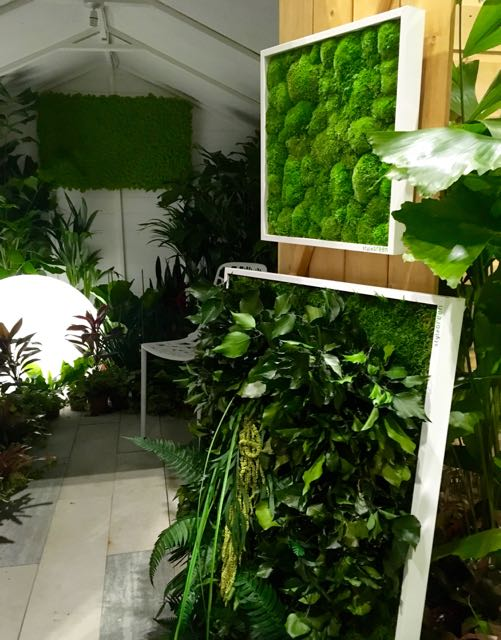 """A 3D moss """"picture' by Liam Sapsford at Grand Designs Live 2017"""