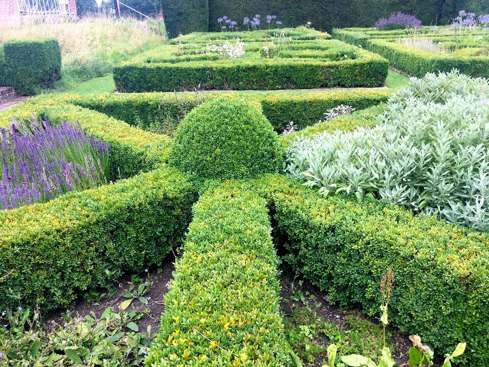 Another of the hedges in the knot garden at Helmington Hall