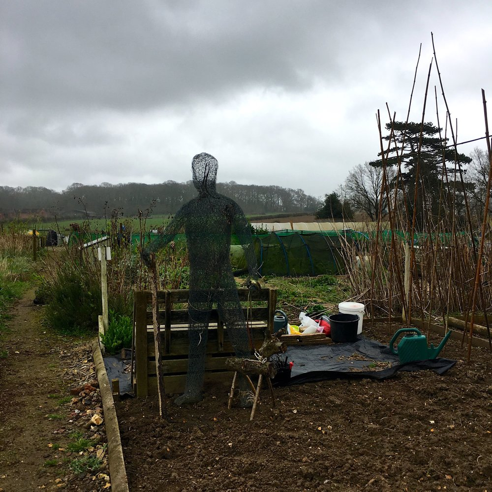 A chicken wire man at the allotments at Kingston Lacy