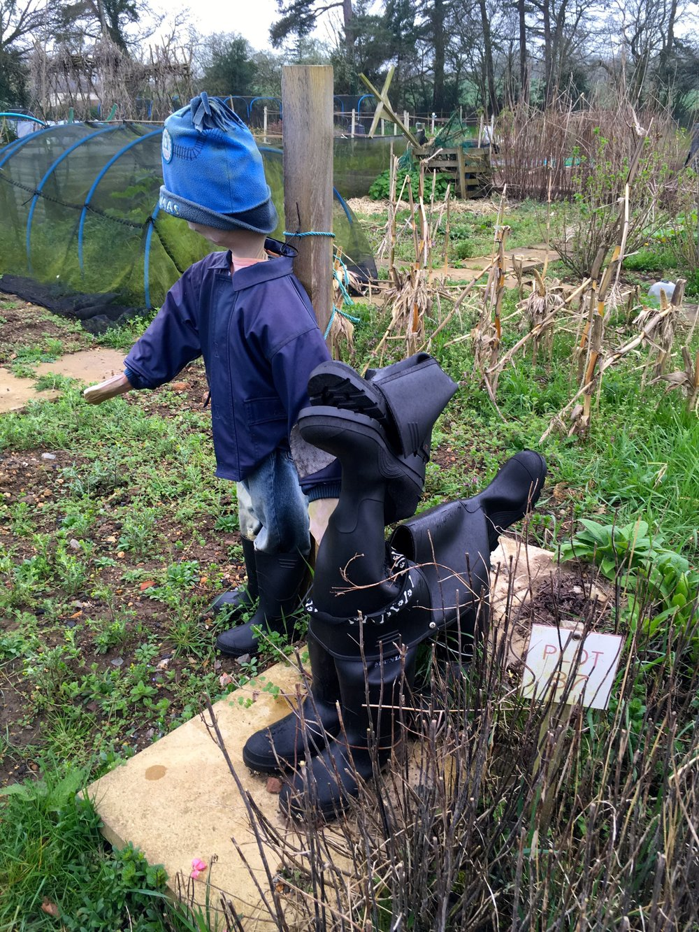 A boy and his welly dog at the allotments at Kingston Lacy