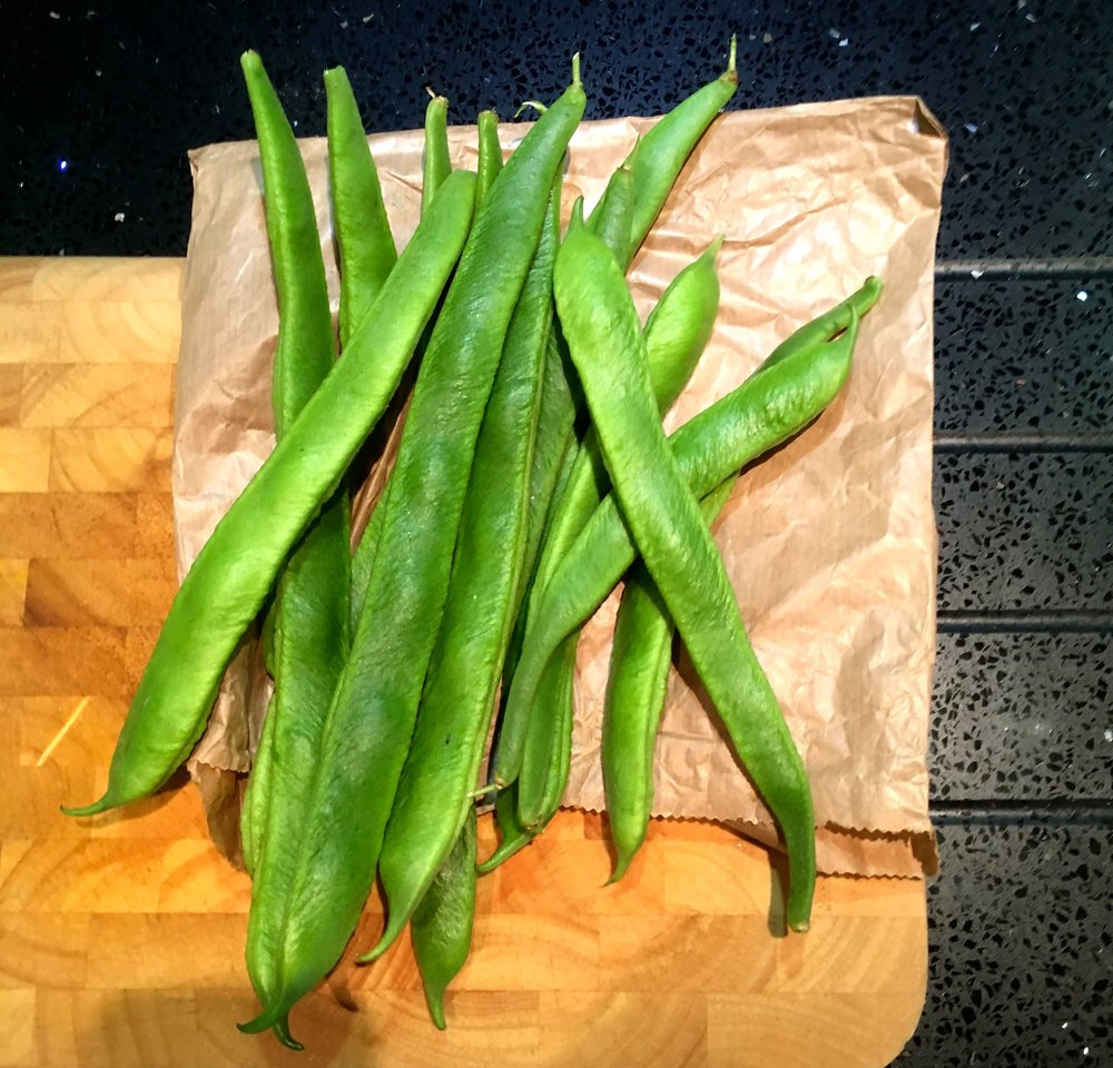 Another handful of runner beans from the plot