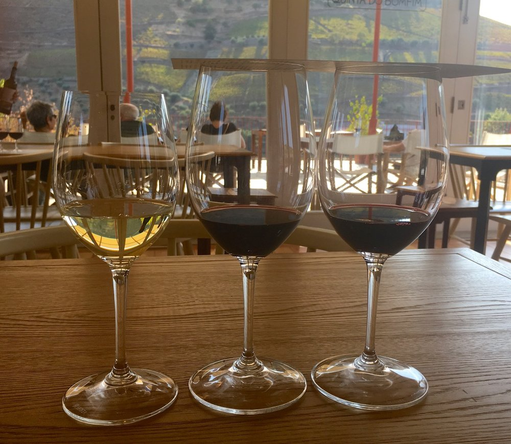 Tasting the wines from the Douro valley at Quinta da Bomfim