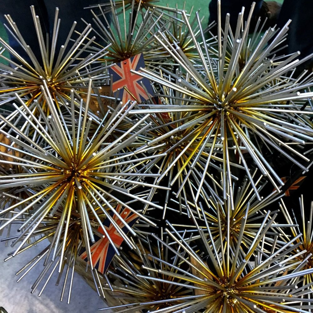 THESE REMINDED ME OF MY AGAPANTHUS SEEDHEADS